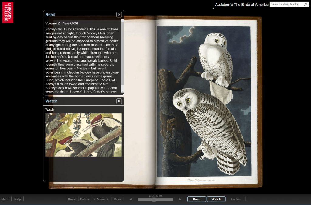 Audubon's The Birds of America TTP Online